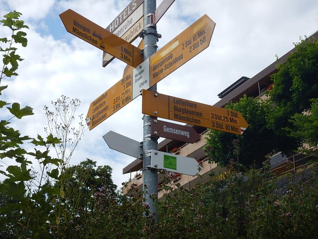 Wanderzeit 3:10h / Trail-Running-Zeit ?