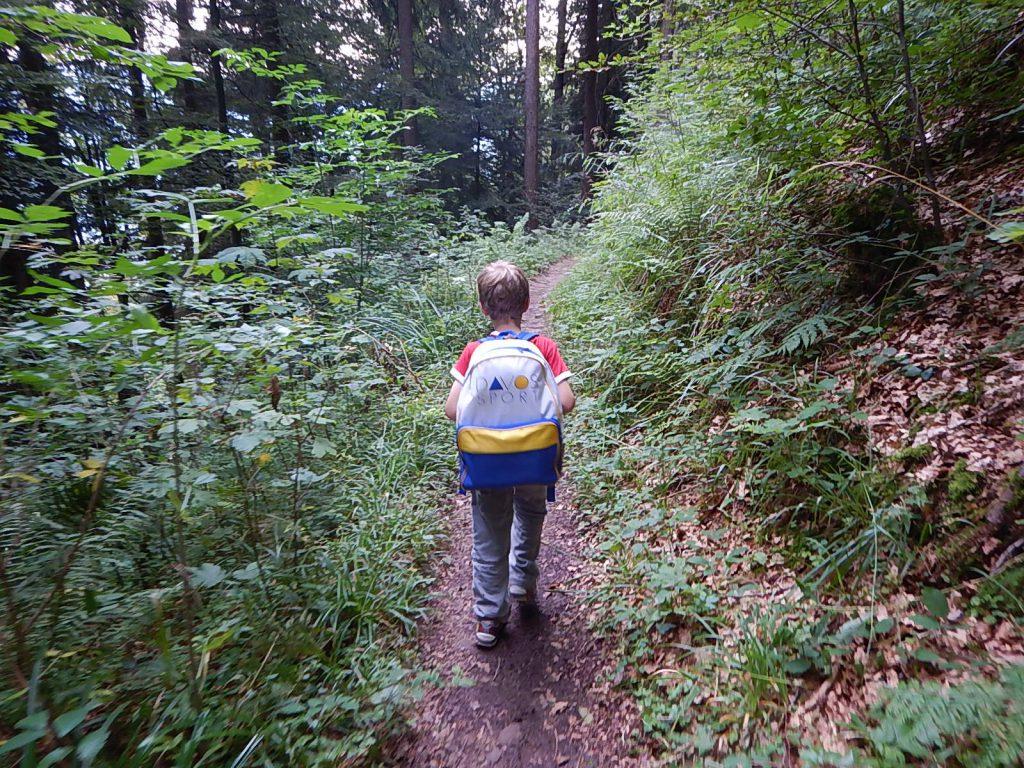 Rigi_Camping (73)
